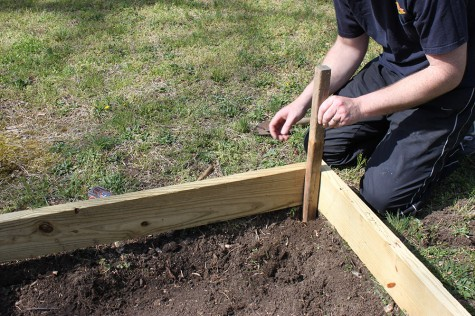 how_to_build_a_garden-DIY_raised-Garden_bed_project20