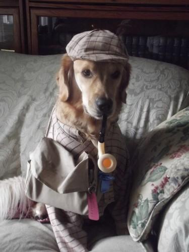 River Sherlock Holmes