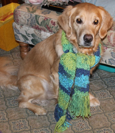 River modeling the Cozy Scarf - 1morethan2.com
